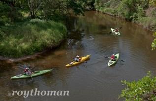 Turkey Creek Kayak Tour 04-10-2013