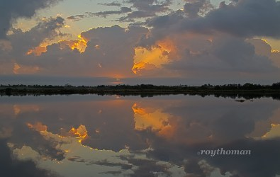Gator rd Sunrise 02-03-14