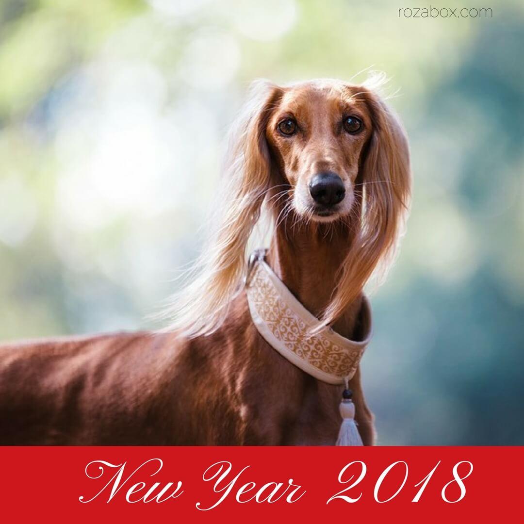 Новогодняя открытка год Собаки - RozaBox.com