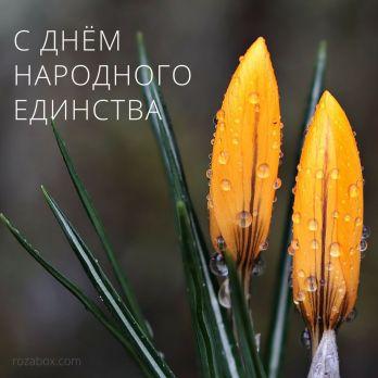 открытка с днем народного единства