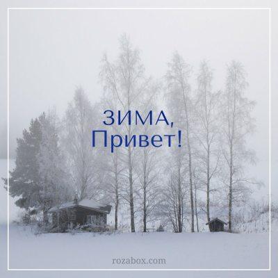 красивая зимняя фотография