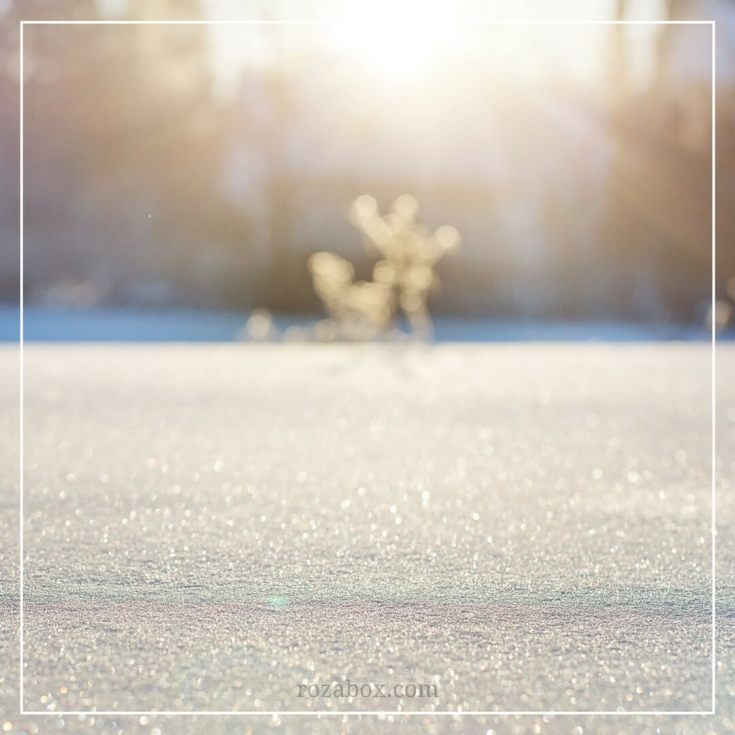 фото зимней природы 2018