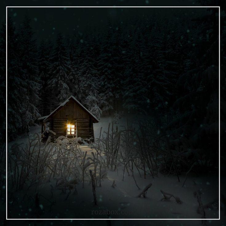 лучшая фотография зимы