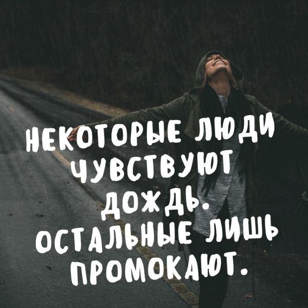 Цитаты про дождь и осень - RozaBox.com