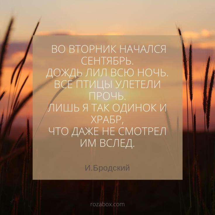 картинки с цитатами