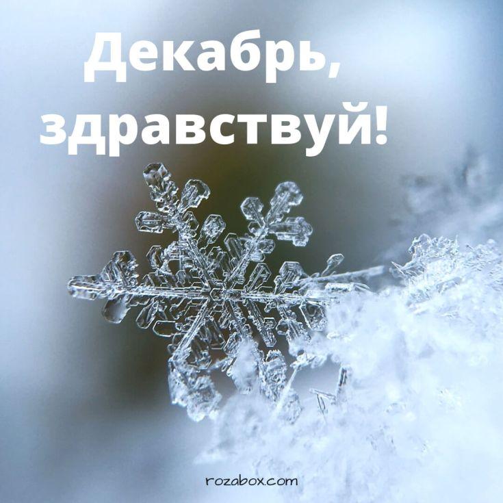 красивые открытки зимы скачать бесплатно