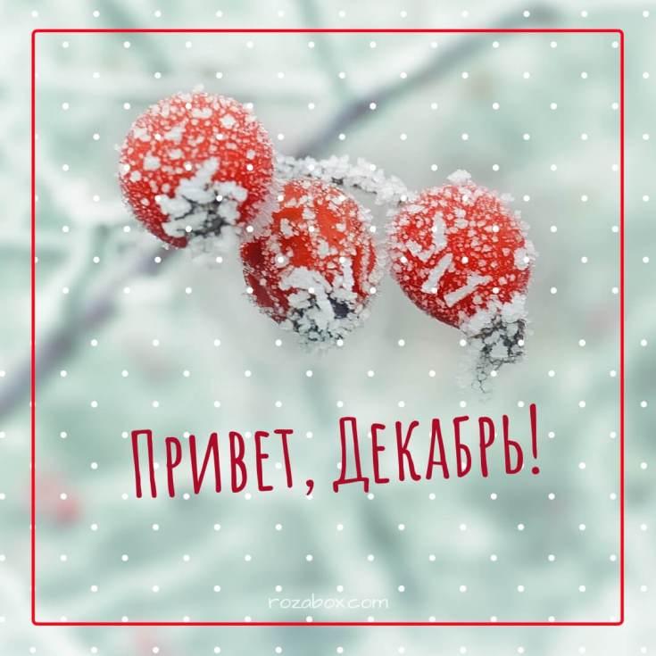 привет декабрь лучшие открытки