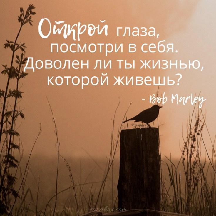 цитата о жизни боба марли