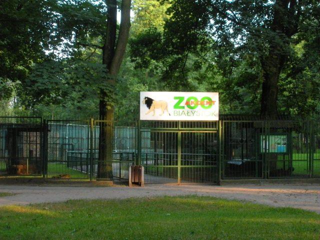 Wejście do Zoo przed modernizacją