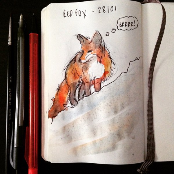 Last Wednesday's red fox, also not enjoying the weather.. Just saying.