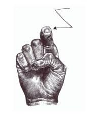 ASL Z
