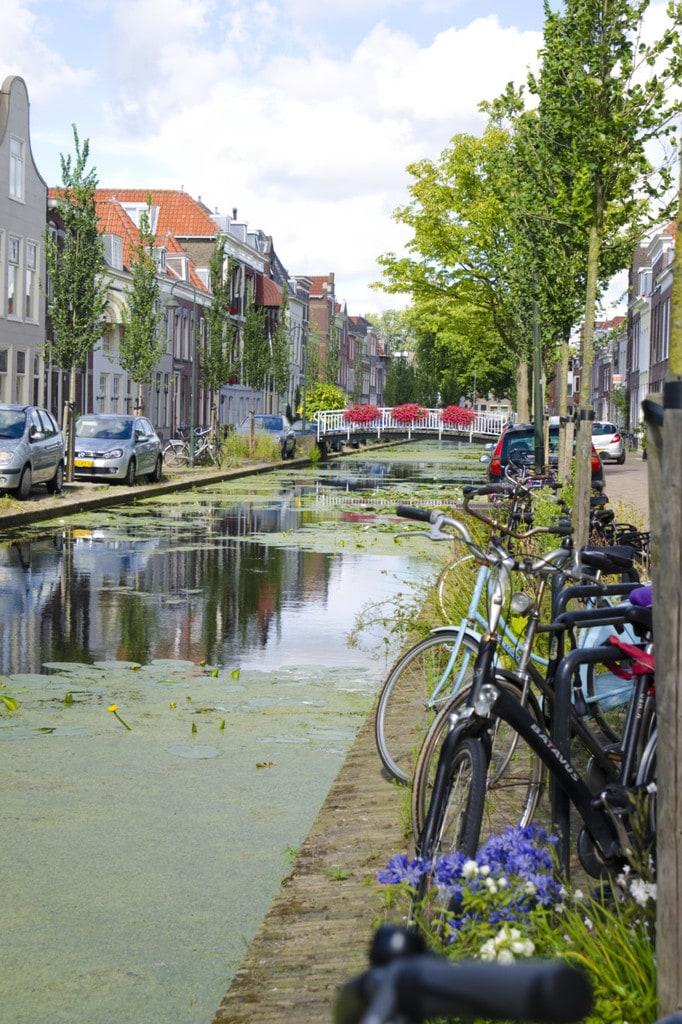 vermeer's little street in delft
