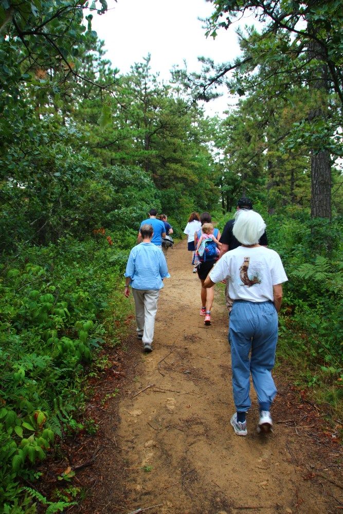 Hike in the Albany Pine Bush with RPCVs of NENY (6/6)