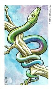 Set-1-Giant-Constrictor-Snake