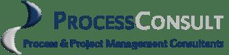 Process consult logo