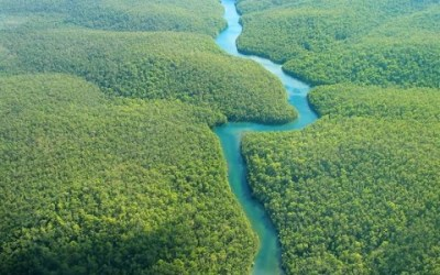 La Amazonía en un sínodo – Juan Ignacio Villar (Vily)