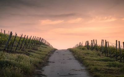 5º dom.de pascua ciclo A: Camino a Dios – Iñaki Otano