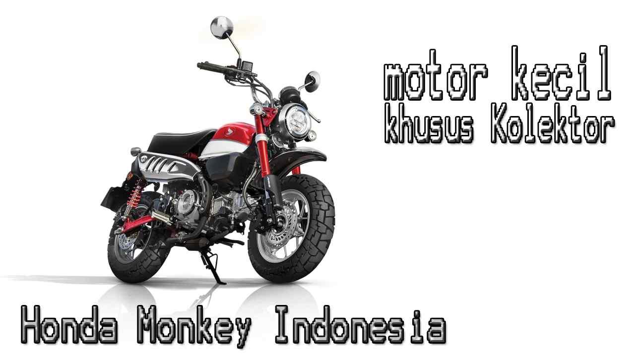 Honda Monkey Indonesia