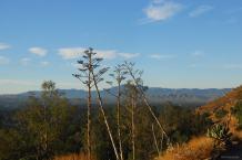 Mt Rubidoux - 11-3-2009 - DSC_2621 WP