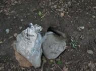 Das Werk von jemandem, dem Kaninchen anscheinend mal das Tulpenbeet umgegraben haben, und ...