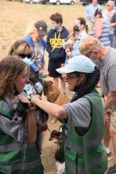 """""""May Day! at Rescue Ranch"""" vaccination and microchip clinic"""