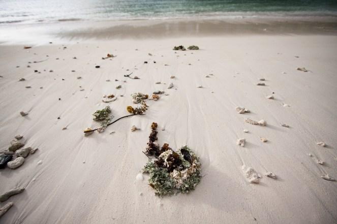 on the beach at Ephelia resort