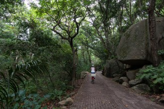 the way to Grand Anse on La Digue