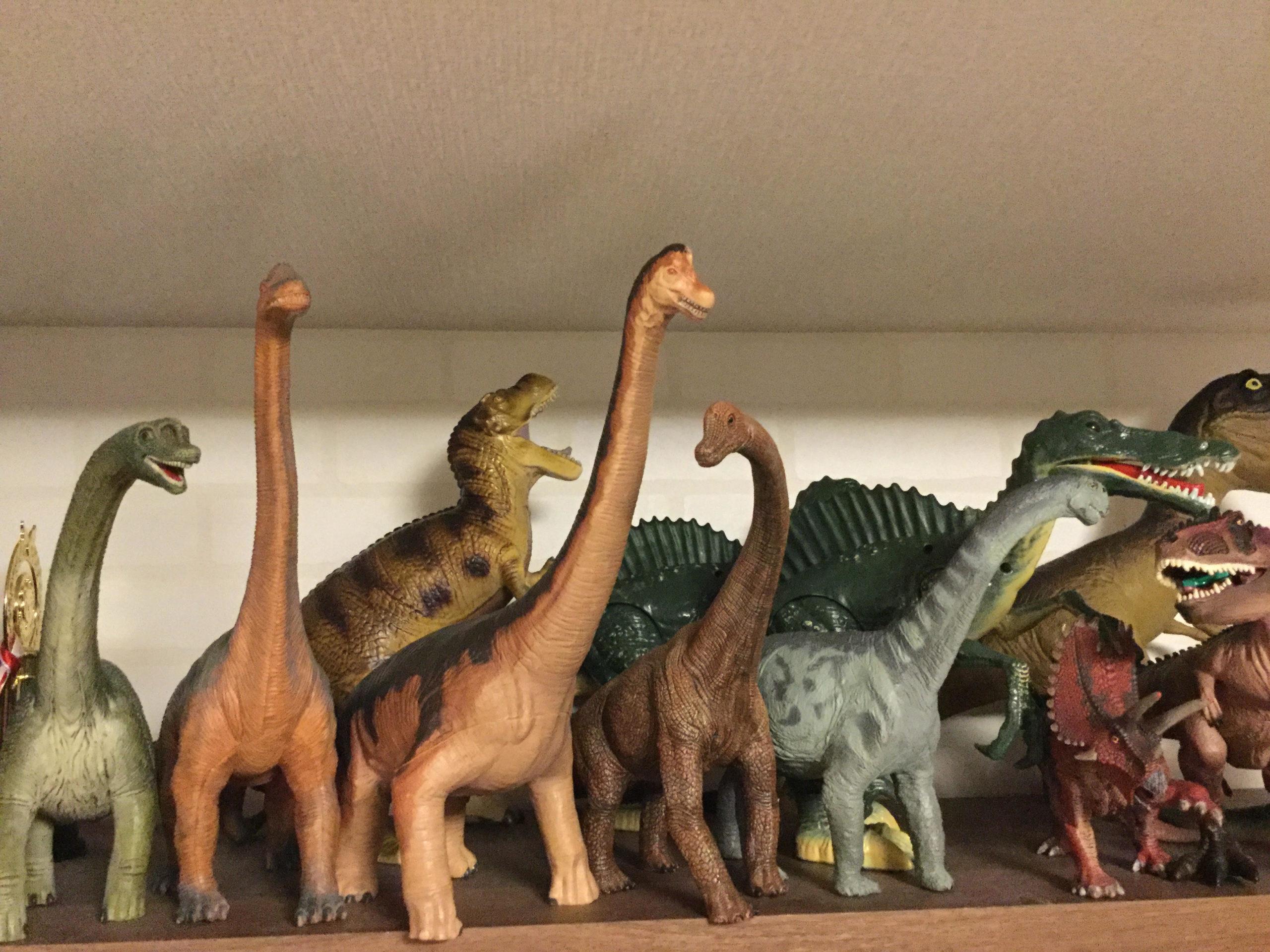 【恐竜好き集まれ】娘の本棚から恐竜図鑑を取り出したらすごい量でした【おすすめ7冊】