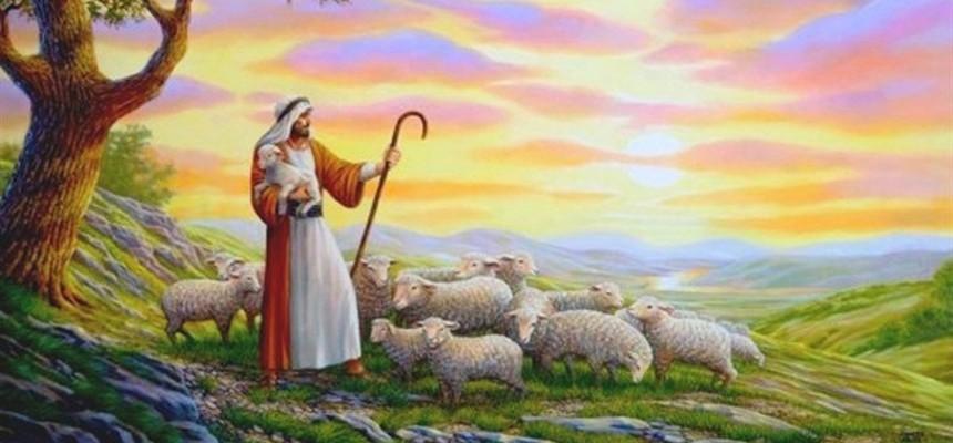 Image result for shepherd god