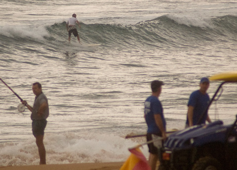 0920: tough to catch the little weak ones at south Narrabeen