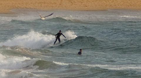 Breaking pretty close to the sand 0740