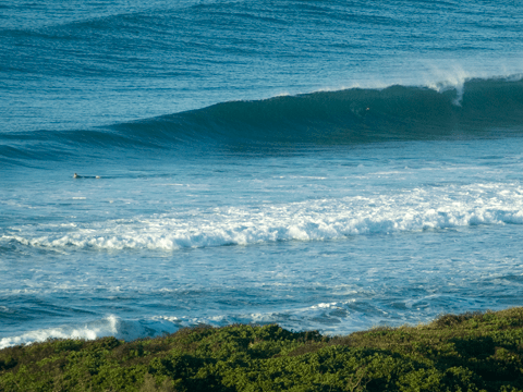 Want relatively uncrowded waves and willing to take a (small) hit on quality?