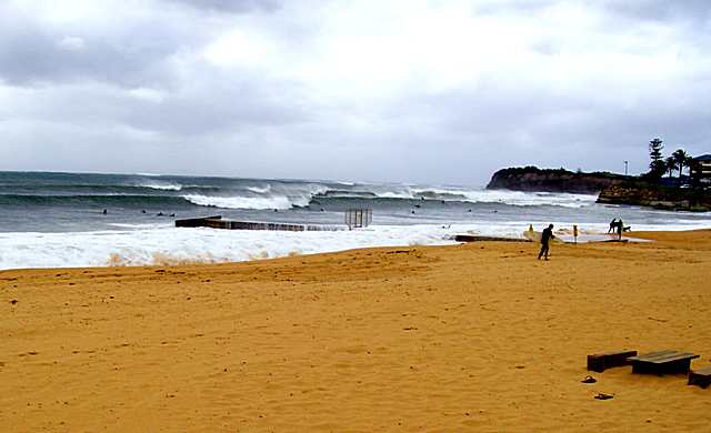 Collaroy--Brownwater