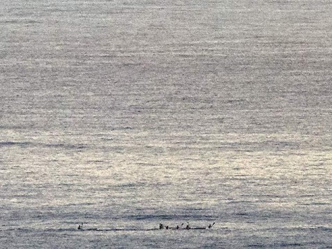 Early morning paddlers