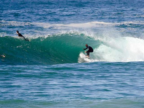 dee why point surfer