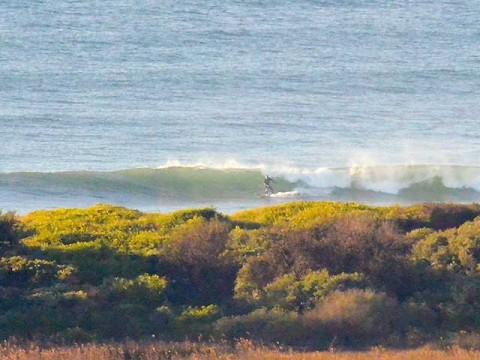 dee why beach surfer