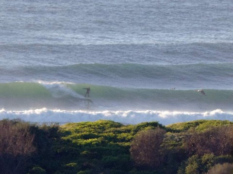 surfing dy beach