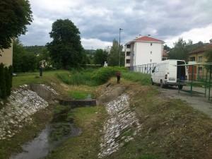 Парцијално уређење потока
