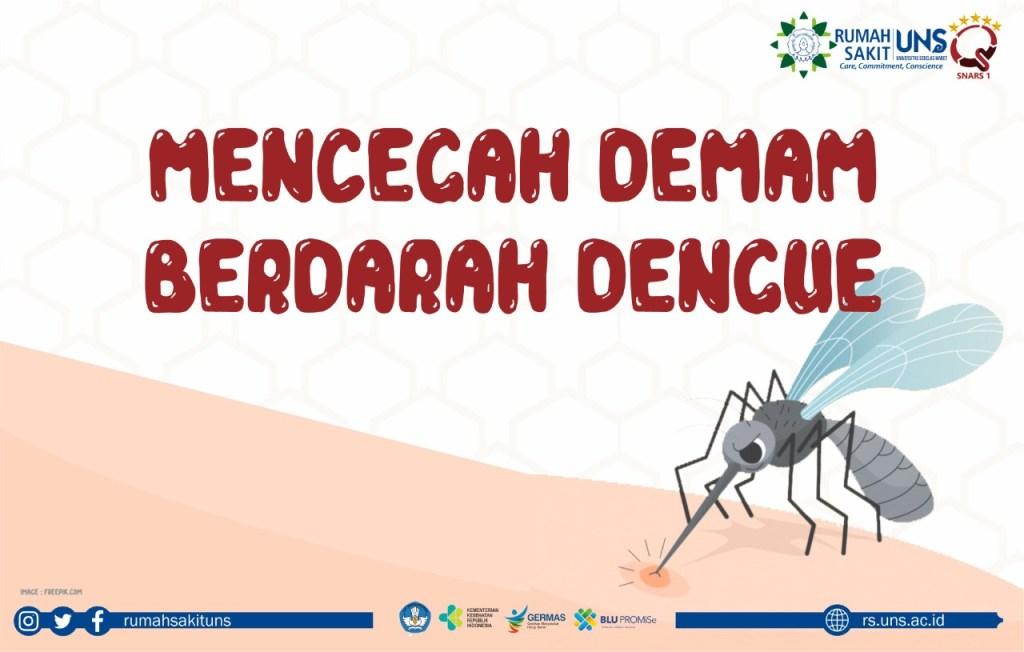 mencegah demam berdarah dengue