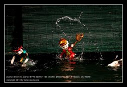 water_puppet_02
