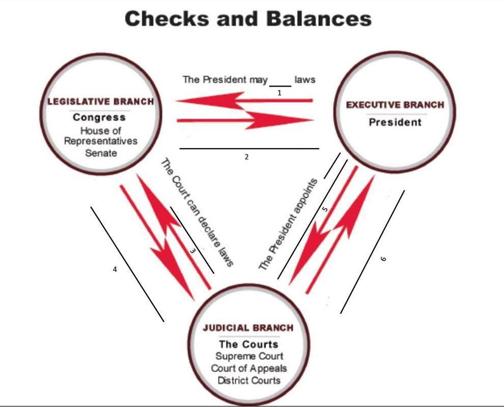 Checks Amp Balances Lesson Regina Santangelo Sportfolio