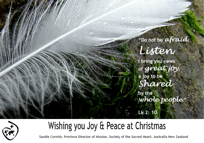 Christmas card 2014 feather and text of Lk 2:10