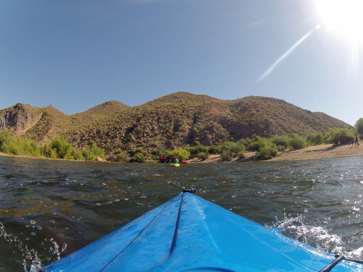 salt river blue point