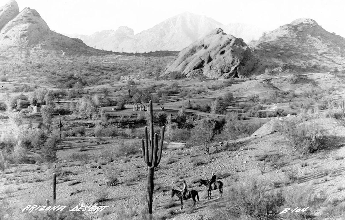papago_saguaro