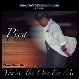 Pica-YTOFM-PRMix