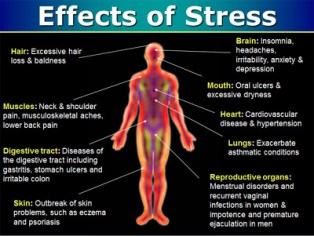 Stress-Tips-Calm-Your-Mind-Heal-Your-Body