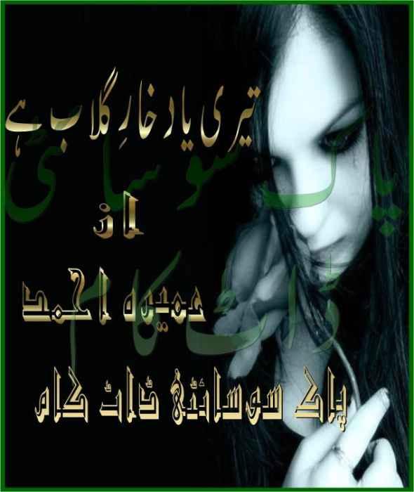 Teri Yaad Khar-e-Gulab He