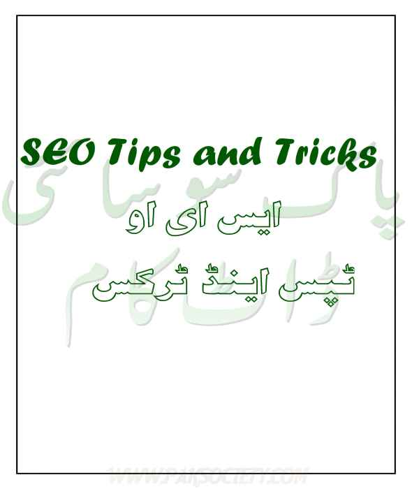 SEO urdu book