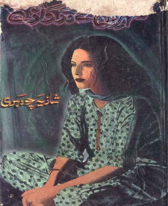Shehr-e-Dil Kay Darwaze
