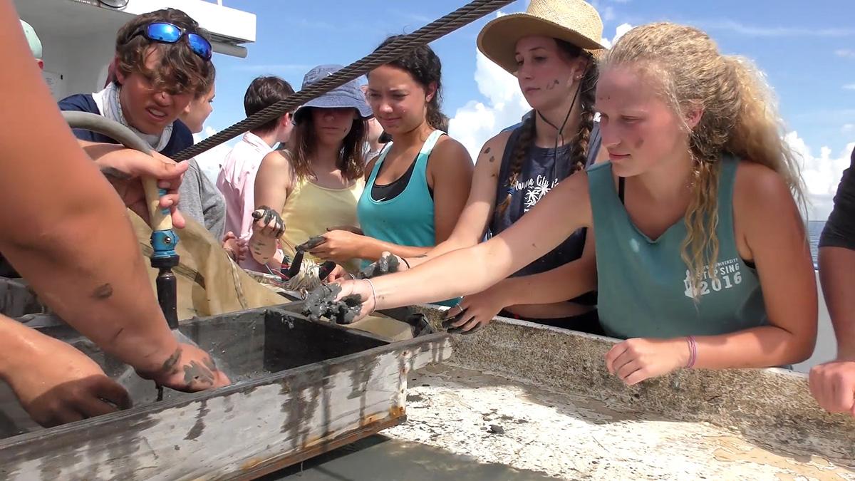 Alabama's sea lab needs your help